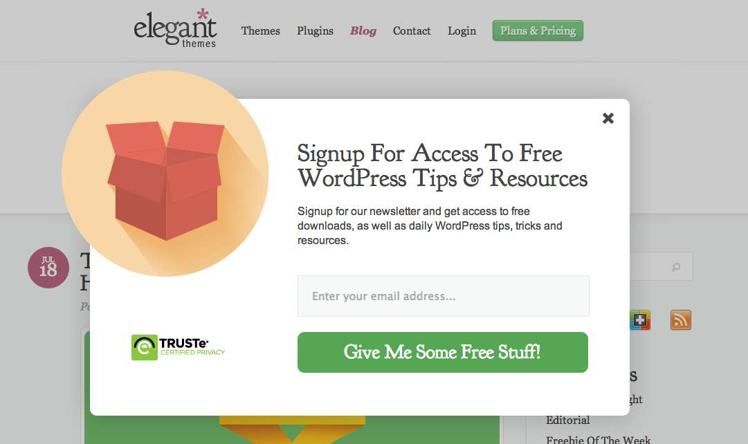 Elegant Theme's timed website popup