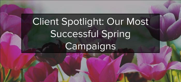 Client Spring Spotlight