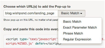 Website Popup URL